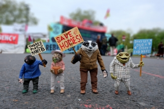 mole, ratty, badger and toad protesting