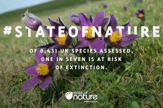 State of Nature infographic which states 'Of 8,431 species assessed, one in seven is at risk of extinction'