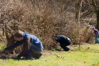 Volunteers planting a hedgerow