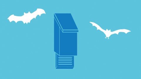 Simple actions bat box illustration