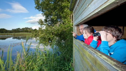 Family birdwatching at Westhay