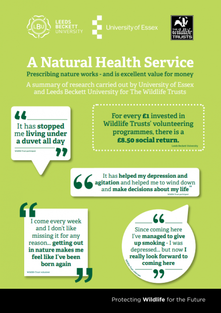 Quotes from people who have found Wildlife Trusts programmes beneficial for their health and wellbeing