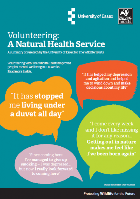 Volunteering: A Natural Health Service