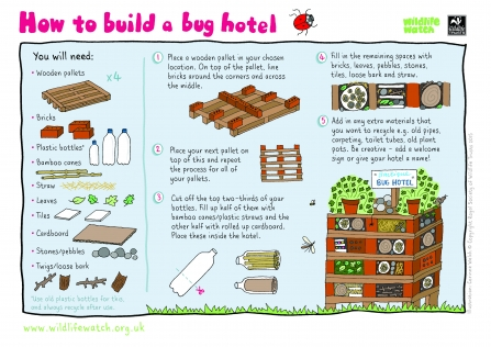 A guide to building a bug hotel by stacking bricks, wooden planks, twigs and other material