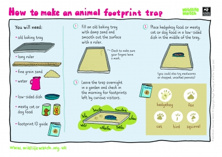 How to make a footprint trap