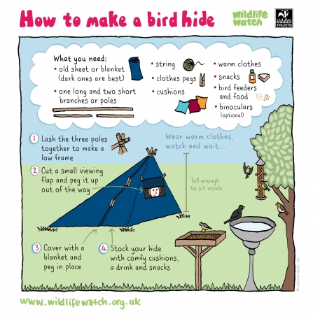 how to make a bird hide