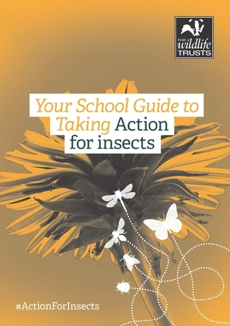 The front cover of the Action for Insects guide for schools