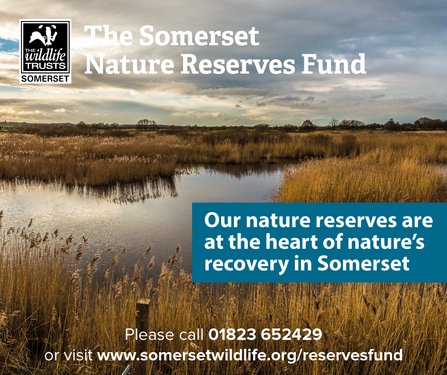 The Somerset Nature Reserves Fund