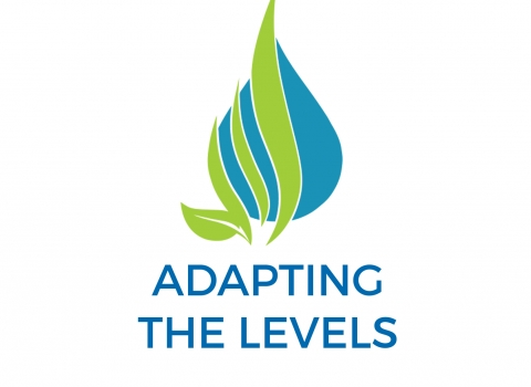 adapting the levels logo