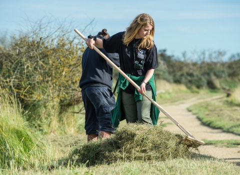 Women rakes up cuttings as part of a volunteering session